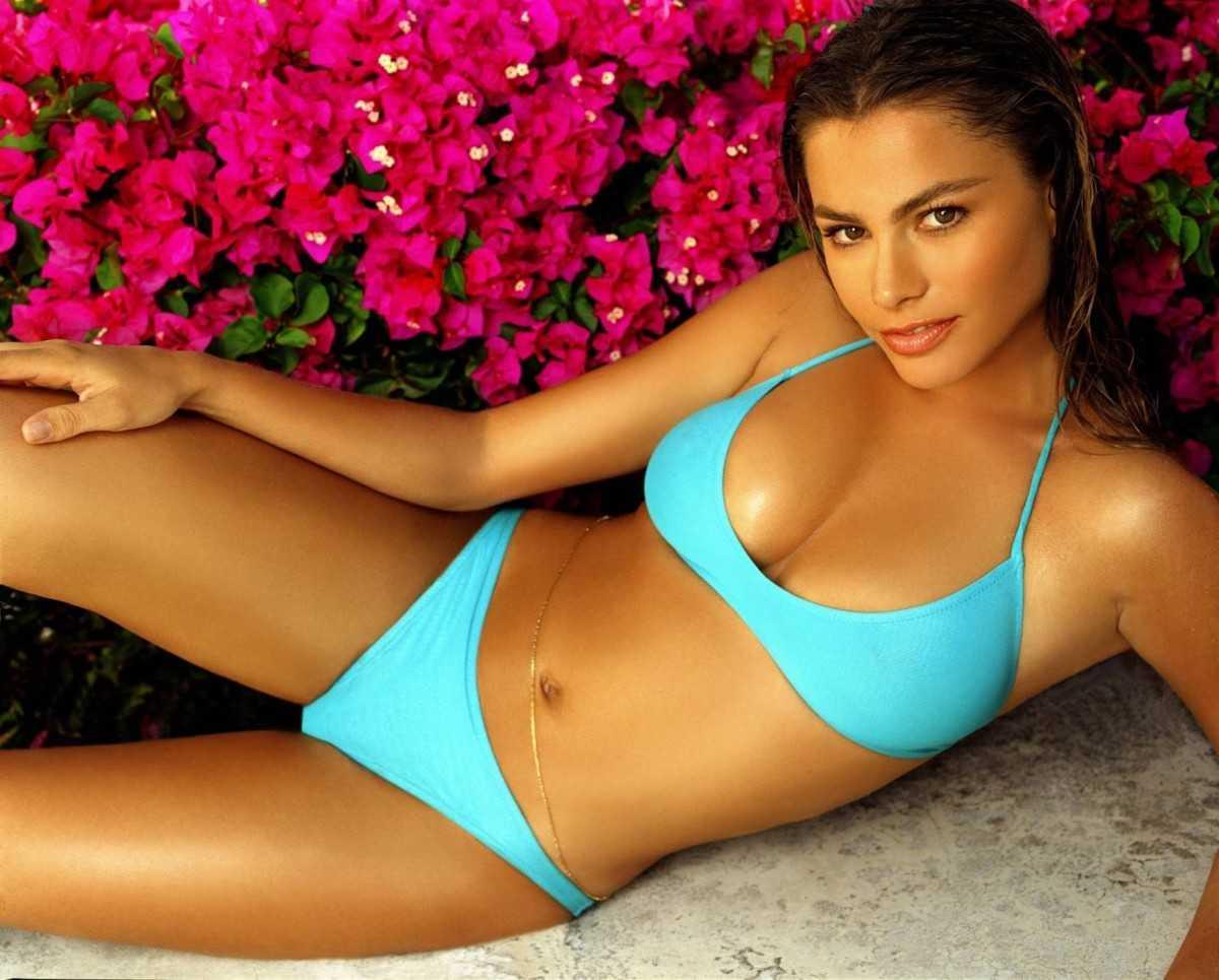 Sexy actress Sofia Vergara in a bikini
