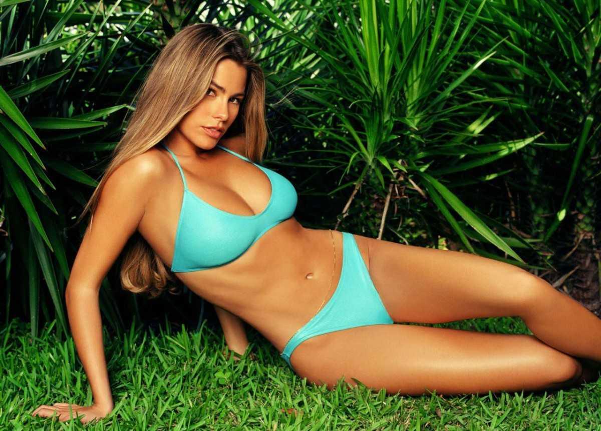 Gorgeous beauty Sofia Vergara in a bikini photo.